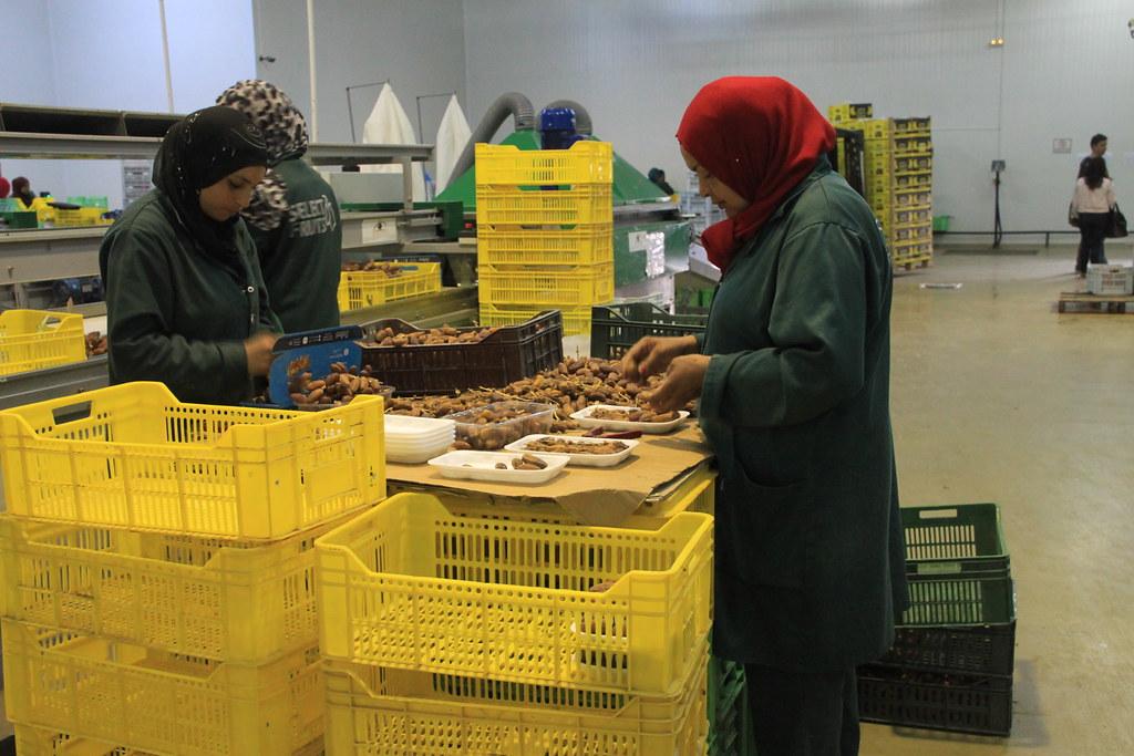 Pourquoi assurer la traçabilité de vos produits en tant qu'entreprise agroalimentaire?